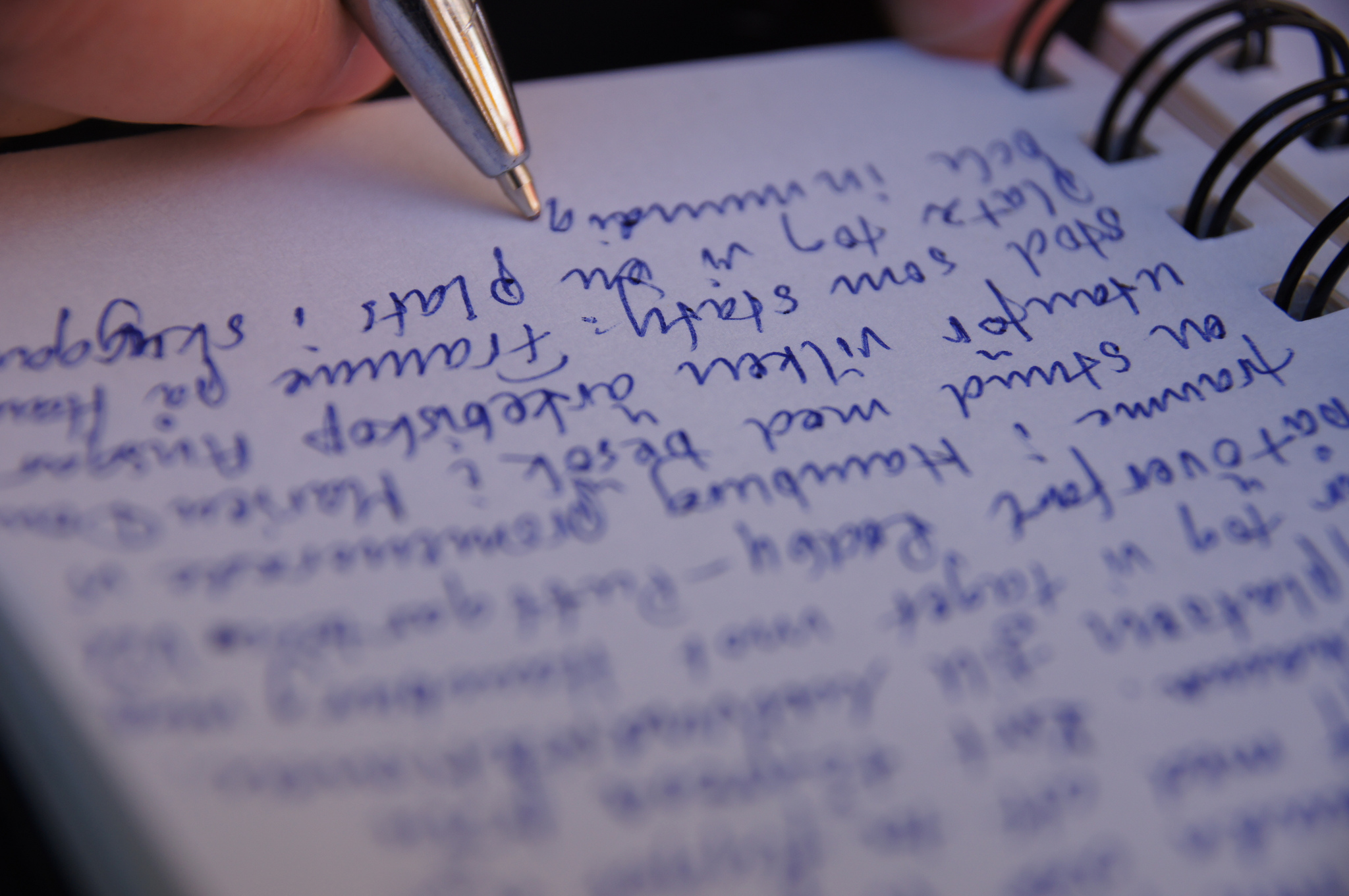 Guest Post by Kim Volker: Keeping a Journal with your Senior